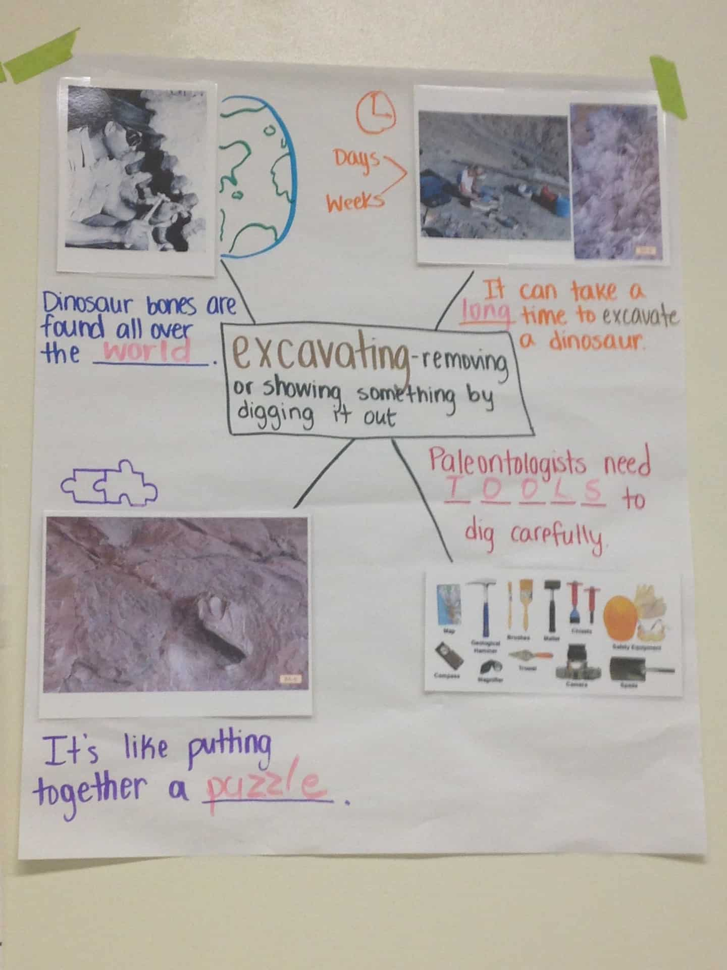 Adrienne Williams anchor chart 5